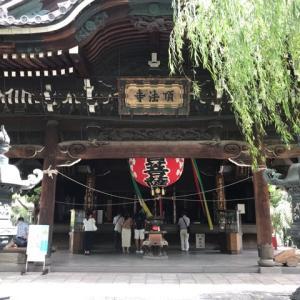 夏スク終了!と京都市街の寺社歩き