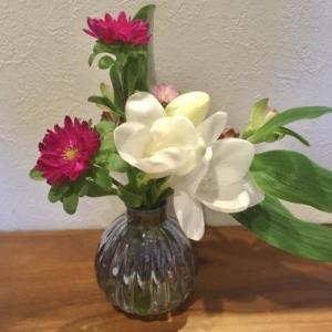 お花もサブスク♪
