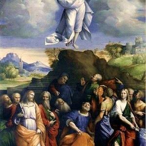 見上げれば 空の広さに 主が見える ー 主の昇天の祝日