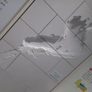 8/18(日)滋賀県民「家族ふれあいサンデー」で無料に!★琵琶湖博物館