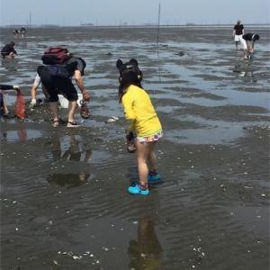 子連れ潮干狩りはバスツアーがおすすめ!