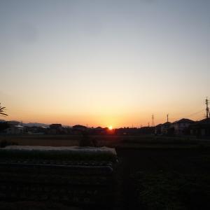 11/14 土 晴 桜井充参院議員コロナ感染