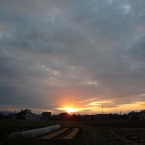 11/22 日 曇後雨 カブール攻撃でISが犯行声明