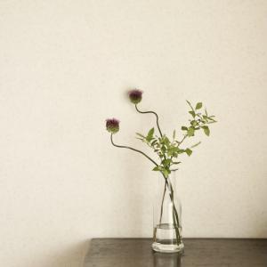 おうち時間 ステキ本でお花の愉しみ方を学ぶ
