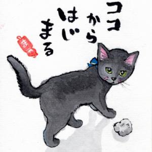 黒猫ココちゃん もずくちゃん