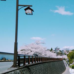花見ride(*´ー`*)