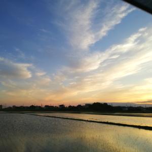 素敵な空でした