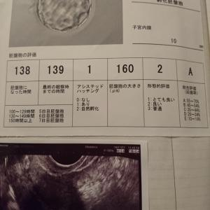 2度目の移植日   ~BT0(D17)