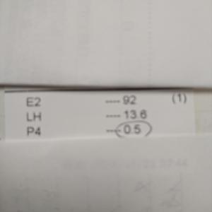 移植周期、内膜チェック  ~D10,12