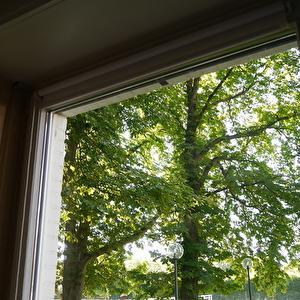 【ドイツ】新聞紙で簡単窓掃除・・・その後、網戸張り。