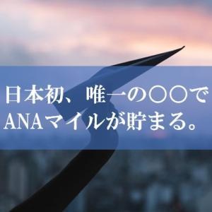 【唯一】ANA陸マイラー祭りの裏技に日本初の○○が登場!? | ANAマイルが貯まるオリジナルカードが高還元で登場しました!