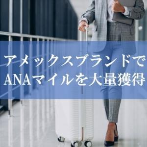 【壮絶】ANA陸マイラー祭りでアメックスのゴールドカードが高還元に! | ANAマイルが貯まる超人気の秘密とは?