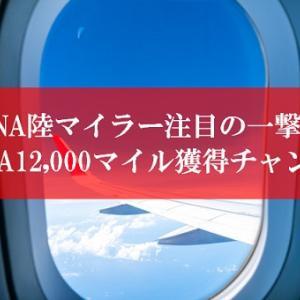 【一撃大量マイル】ANA陸マイラーの裏技が緊急ポイントアップ | ANAマイルが貯まる16,000円還元が凄い。