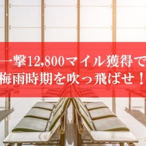 【2021年6月】JAL陸マイラー祭りで一撃12,800マイル獲得! | JALマイルが貯まる梅雨時期の超高還元を見逃さない。