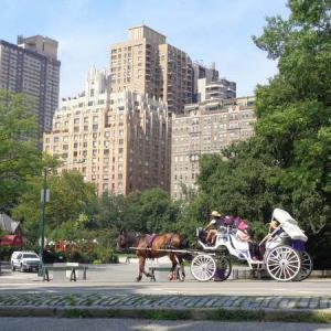 NY・広大な「セントラルパーク」をレンタル自転車で短時間で回るルートをご紹介・ジョンレノンのゆかりの地も訪問(マイルで世界一周旅行記㊽:ニューヨーク編⑪)
