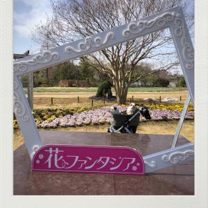3/21お誕生会前に花のファンタジアへ(^^)
