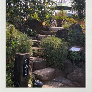 素敵カフェ発見!ガーデン席へ(^ ^)
