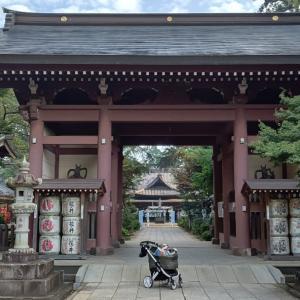 大宝八幡宮の七福神が好き(^-^)