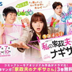 新火曜ドラマ「私の家政夫ナギサさん」多部ちゃんが素敵(^ー^)~テレビドラマ研究家便り~