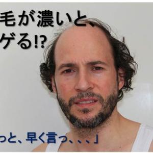 体毛が濃いと薄毛になる?