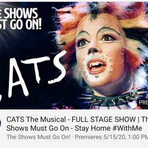 今週末のYouTubeミュージカルは。。。 CATS!