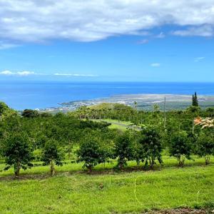 ハワイ島 6日目。。。UCCコーヒー