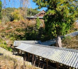 奈良 長谷寺へ♪