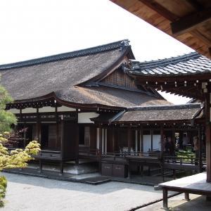 思い出 鍵型の回廊を楽しむ 仁和寺
