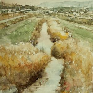 河川敷風景です。