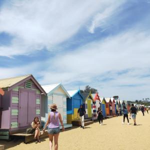 夏のメルボルン!ブライトンビーチで癒やし&リフレッシュ!