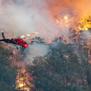 【オーストラリア森林火災】メルボルンの状況と深刻化する風評被害