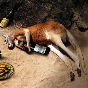 【オーストラリア都市伝説?】思わず笑っちゃうへんてこな法律。