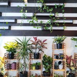 カフェの街メルボルンのカフェの風景。