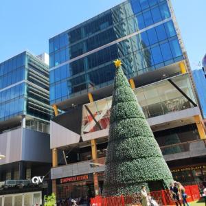 あと1ヶ月でクリスマス!メルボルンの街の様子は?