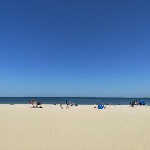ポートメルボルンビーチへ行ってみた!