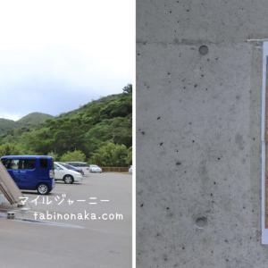 沖縄やんばるの森、ター滝でリバートレッキング。亜熱帯のジャングルでリフレッシュ