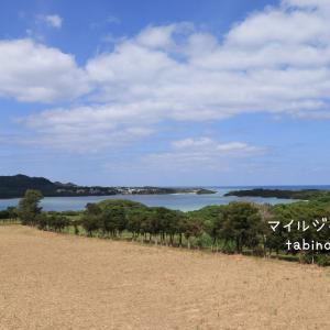 石垣島おすすめドライブ☆川平湾を望む絶景や川平タバガー、平離島展望など