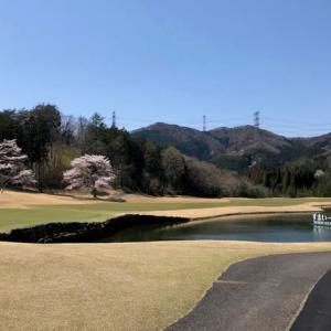 絶好のゴルフ日和でございました