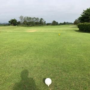 今日はゴルフ日和