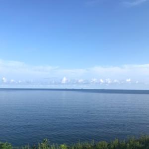 ハムサラダカツ ~ 輪島 ルートインホテル