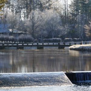 温水路という名の用水路の周りをブラライカ
