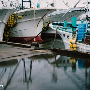 雨上がりの漁港