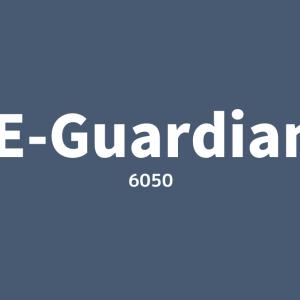 【6050】イー・ガーディアン企業研究|業績売上推移・ビジネスモデル