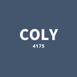 【4175】colyの企業研究(業績・ビジネスモデル)