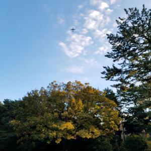 東京都庭園美術館というか旧朝香宮邸へ!