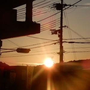 夏至から 翌日 やはり 炎天下 やな。昨日の父の日の晩のおかず。