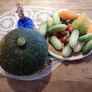 昨日は きれいな 満月🌕でしたね。満月の日に収穫した物 と 冷やしおやつ