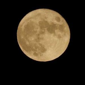 昨夜の 中秋の名月🌕 満月 うまく撮影できた。そして手作り団子