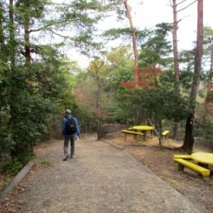 紅葉には早かったけれどハイキング