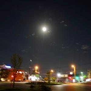 1日早いお月見